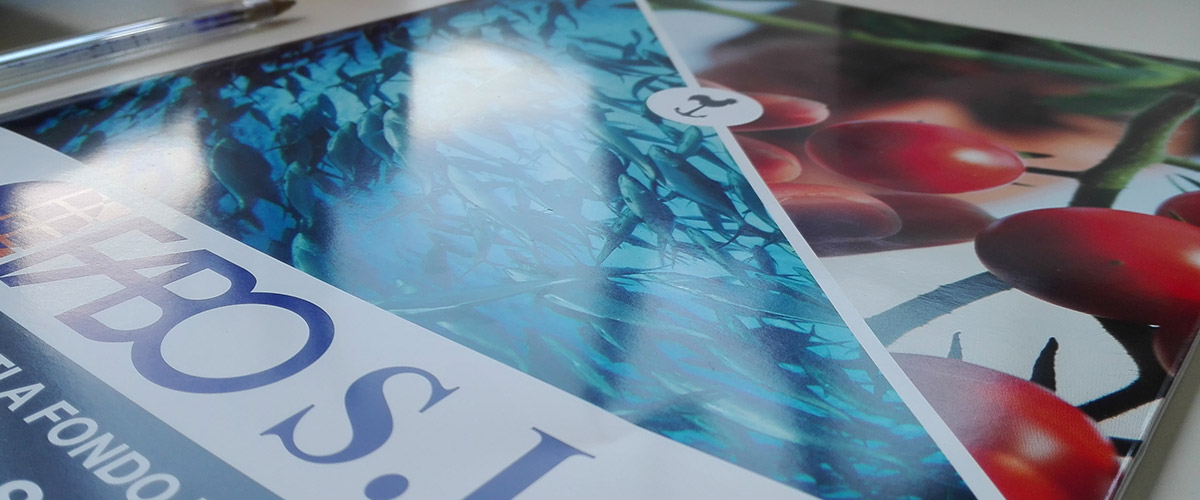 Fabo: brochure close up